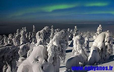 زادگاه بابانوئل جنگل یخ زده ای در فنلاند