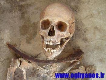 1417373845991 - کشف 6 جسد خون آشام در لهستان + تصویر