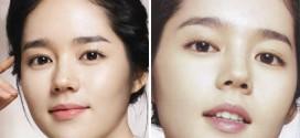 1421098013461 272x125 - مدل های عمل جراحی در میان مردم کره جنوبی و ژاپن