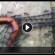 فیلمی جالب از اتحاد مورچه ها