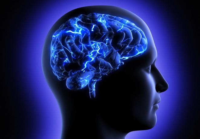 140116085105 large - مغز انسان، ساختار 11 بعدی دارد