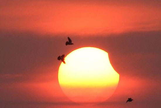 گزارش تصویری تشریحی؛تصاویر نخستین خورشید گرفتگی آمریکا پس از ۹۹ سال