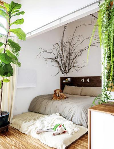 mo28918 - طراحی اتاق خواب به شکل طبیعت