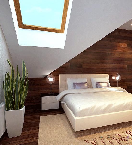 5 گیاه آپارتمانی مناسب در دکوراسیون اتاق خواب