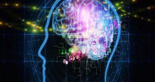 9404 17m1070 310x165 - ایا ظرفیت مغز تمام میشود؟ آیا مغز ما پر میشود؟