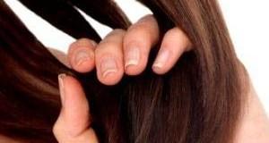 چرا بدن انسان مو دارد؟