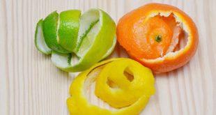 disposable2 properties2 fruits1 310x165 - پوست مواد خوراکی چه خاصیتی دارد