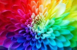 رنگ هایی که انسان نمیتواند ببیند