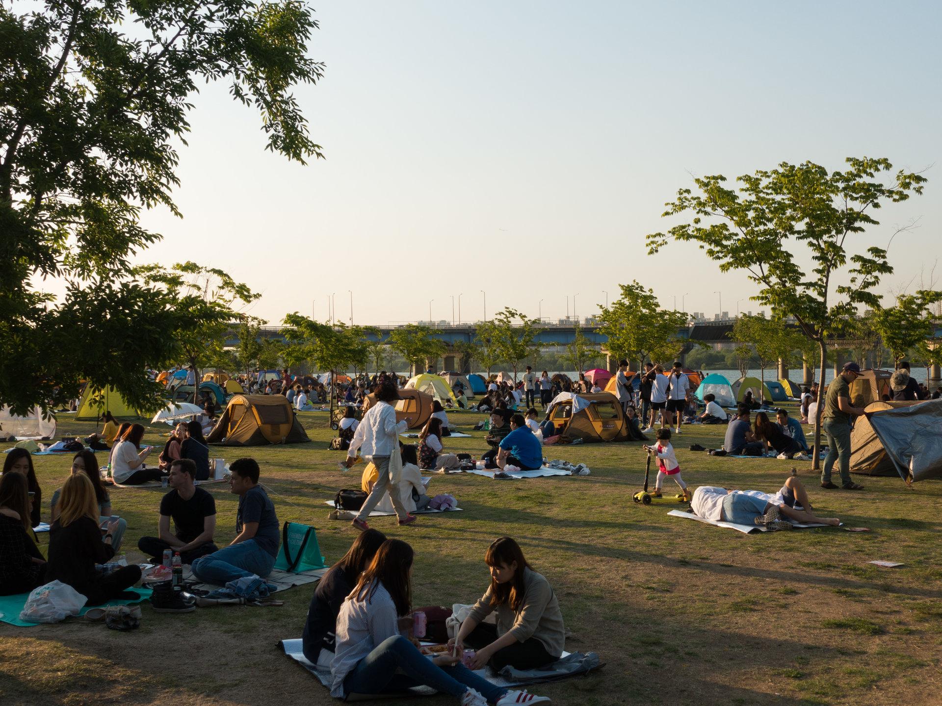 12 11 - تفاوت کره شمالی و کره جنوبی از روی عکس