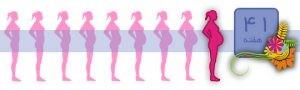هفته چهل و یکم بارداری چگونه است