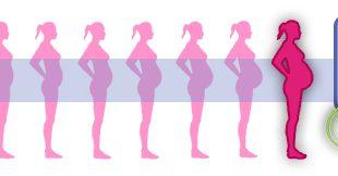 7825 492 310x162 - هفته چهل و یکم بارداری چگونه است