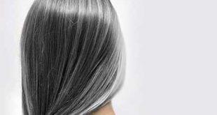 ar4 8098 310x165 - سه دلیل اصلی سفید شدن مو در جوانی