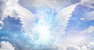 re2412 310x165 - آیا فرشتگان نیز دارای عقل میباشند؟