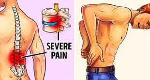 0 14 310x165 - تمرینات خانگی برای کم شدن درد کمر