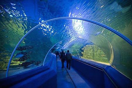 aquarium 07 - بزرگترین آکواریوم های جهان