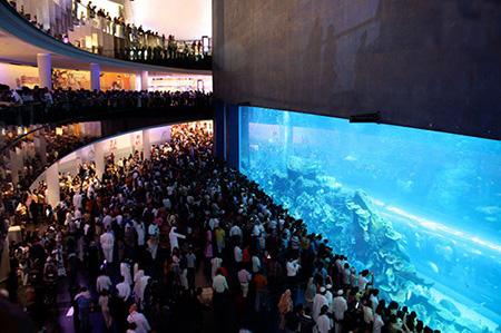 aquarium 10 - بزرگترین آکواریوم های جهان