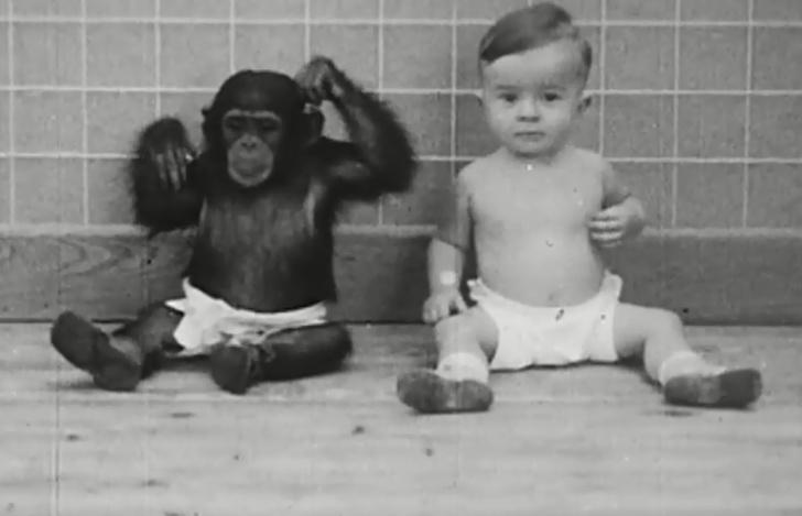 آزمایشات ازاردهنده روی کودکان