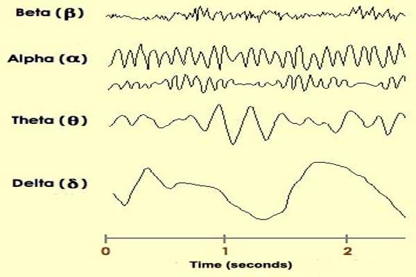 نگاه علمی به خود هیپنوتیزم، سطوح و مراحل خواب مصنوعی، امواج ساطع شده از مغز به هنگام خوابیدن