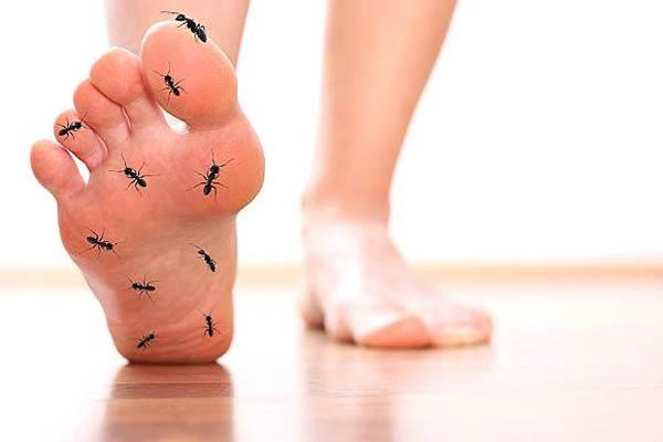 191156 374 - دلیل فعالیت های غیر ارادی بدن مانند پلک زدن چیست