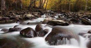 fall 3 310x165 - نکات عکاسی از طبیعت در فصل پاییز