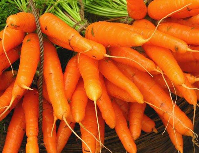 مزایای هویج برای پوست