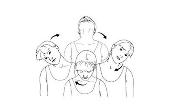 حرکات دورانی گردن