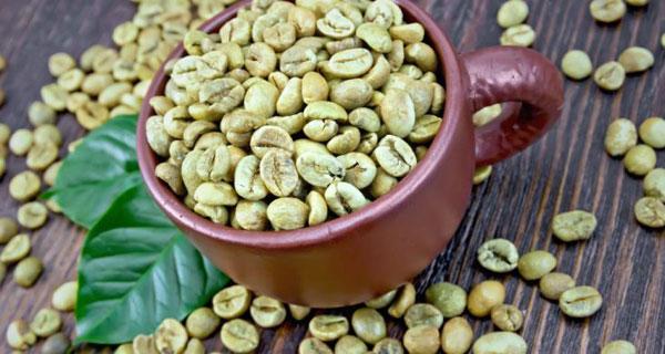 قهوه سبز دارای خواص بی شماری برای سلامتی و زیبایی است.