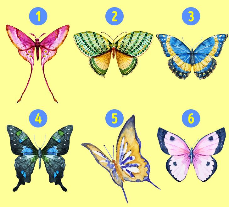 با انتخاب یکی از پروانه ها به شخصیت خود پی ببرید