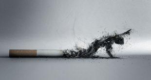 0.jpeg 310x165 - آداب و اصول سیگار کشیدن در مکانهای عمومی