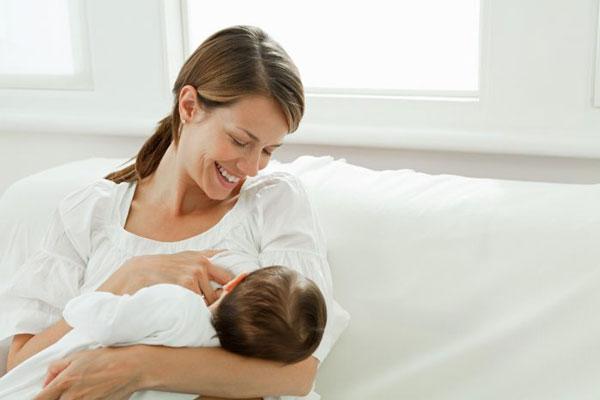 مصرف جینسینگ در دوران شیردهی، منع مصرف جینسینگ در دوران شیردهی