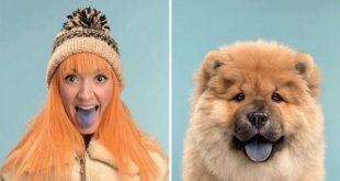 dog 10 600x400 1 310x165 - شباهت جالب سگهای خونگی به صاحبشون