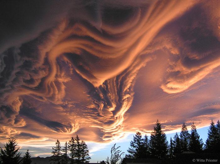 phenomenon 2 - زیباترین و جالب ترین پدیدهای طبیعی