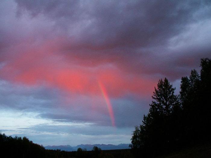 phenomenon 3 - زیباترین و جالب ترین پدیدهای طبیعی