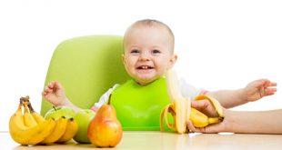 asal 310x165 - میوه هایی که نباید به کودکان داده شوند