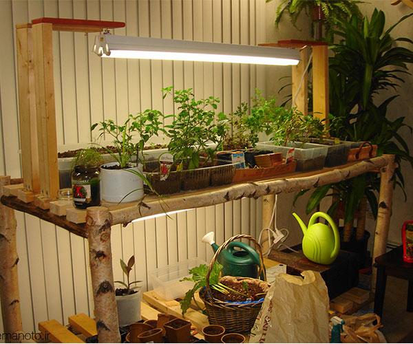 342229 589 - نور مصنوعی برای گیاهان آپارتمانی و مزایا و معایب
