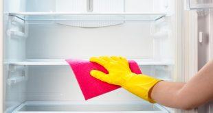 GettyImages 484299850 310x165 - آموزش تمیز کردن و خوش بو کردن یخچال