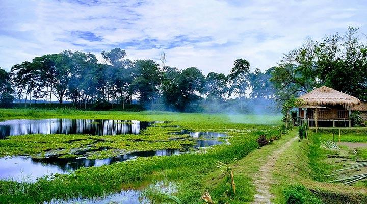 جزیره ماجولی - زیباترین جزیره های دنیا