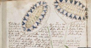 68288328 voynich manuscript 66 1 310x165 - آثار باستانی که هنوز هم رازشان کشف نشده است
